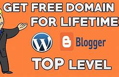 lifetime web hosting and domain